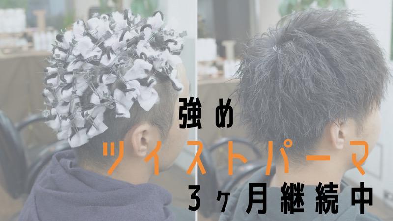 【大阪 堺】強めツイストパーマ3ヶ月継続中というブログのタイトル画像
