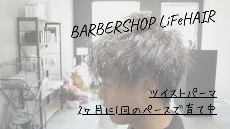 ツイストパーマ、2ヶ月に1回のペースで育て中【大阪 堺】というブログのタイトル画像
